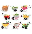 vegetables in wheelbarrow healthy nutrition vector image