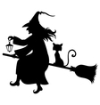 witch fly cat vector image