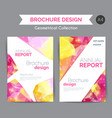annual report template modern flyer with vector image vector image
