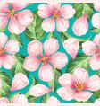 apple flowers petals and leaves in watercolor vector image vector image