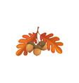 autumn oak leaves and acorn cartoon icon
