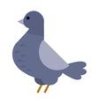 Dove icon cartoon style bird vector image vector image