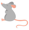 little mouse on white background vector image