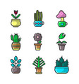 plants and flowers in pots collection of vector image vector image