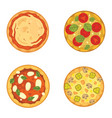 thinly sliced pepperoni is a popular pizza vector image vector image