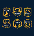 golden horse royal heraldry and business company vector image