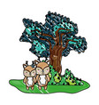 grated cute deer couple animal and tree vector image