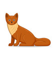 marten animal standing on a white background vector image vector image