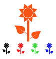 sunflower plant icon vector image