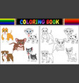 coloring book pets cartoon vector image vector image