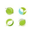 green leaf logo leaves nature ecology symbol or vector image vector image