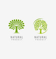 natural product logo tree symbol or label vector image vector image