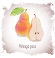 Vintage card with pear vector image vector image