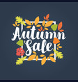 autumn sale design with bright autumn leaves vector image vector image