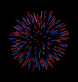 firework isolated beautiful salute on black vector image vector image