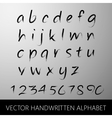 handwritten alphabet calligraphic brushed letters vector image