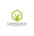 lawn care logo design vector image vector image