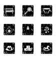 Newborn icons set grunge style vector image vector image