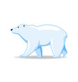 polar bear animal standing on a white background vector image