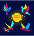 set modern abstract birds logo template vector image vector image