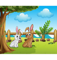 Two bunnies inside the fence vector image vector image