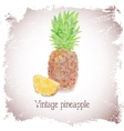 Vintage card with pineapple vector image