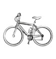 bicycle sport transport recreation activity vector image