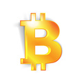 Bitcoin currency signs vector image vector image