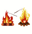 bonfire - camping burning woodpile campfire vector image