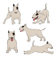 collection bull terrier dog icons vector image vector image