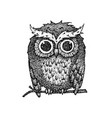 dotwork cute owl vector image