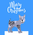 merry christmas greeting card with grey dog smile vector image