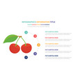 red cherry infographic template concept with five vector image vector image