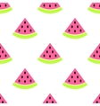 Watermelon slices seamless pink pattern on white vector image vector image