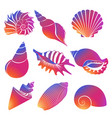 fresh modern gradient sea shells and pearl vector image vector image
