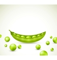 Green peas vector image