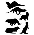 otter animal mammal silhouette vector image vector image