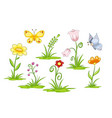 set of different flowers and butterflies vector image vector image