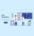 two multiracial geneticists doing dna research vector image vector image