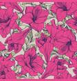 amaryllis flower seamless floral pattern vector image