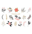 elegant christmas graphic set set plants vector image vector image