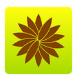 flower sign brown icon at green-yellow vector image vector image