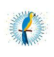 macaw bird icon vector image vector image