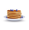 pancakes with blueberries vector image