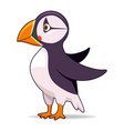 puffin bird on a white background vector image