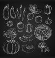 vegetables isolated icons sketch vector image vector image