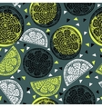 Citrus pattern graphics vector image