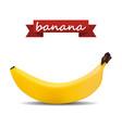 banana with shadow vector image vector image
