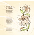 Blooming lilies vector image