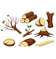 chopped wooden trunk isolated set on white space vector image vector image